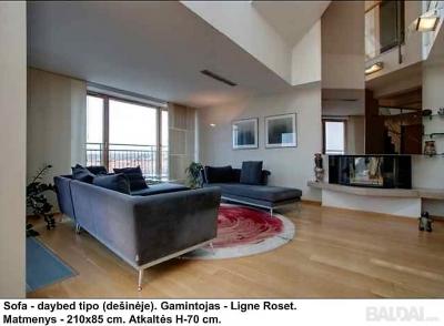 Gerai prižiūrėtas svetainės sofų komplektas  (Ligne Roset)