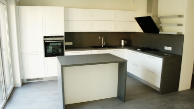 Virtuvės baldai (17)