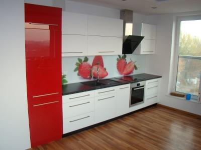 Virtuvės baldų gamyba (3)