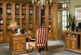 Molodečno D9 bibliotekos baldai