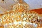 Krištolinis šviestuvas 9332 D-400