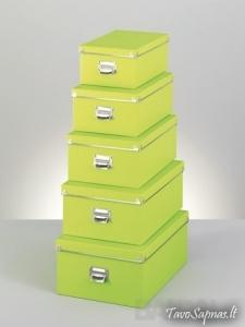 Dėžė Daiktams (17956)