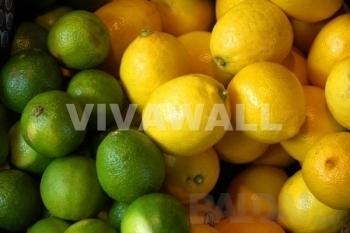 Fototapetai Citrusiniai vaisiai