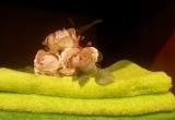 """UAB """"Andėja"""" - frotiniai vonios rankšluosčiai"""