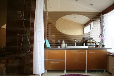 Veidrodžiai voniai
